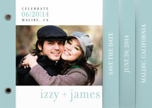 float + celebrate Save the Date Minibook&amp;trade; Cards