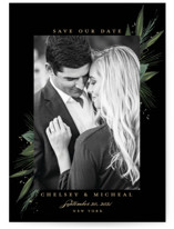 Our Special Day by Susan Moyal