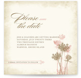 Rustic Queen Anne Save the Date Cards