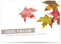 Painted Leaves Save the Date Cards