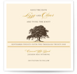 Oak Tree Save the Date Cards