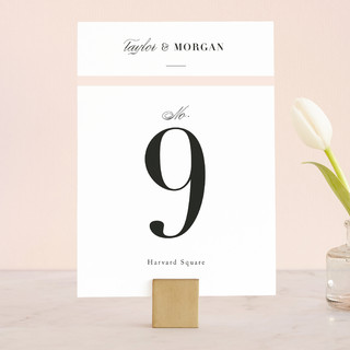 Darling and Dashing Wedding Table Numbers