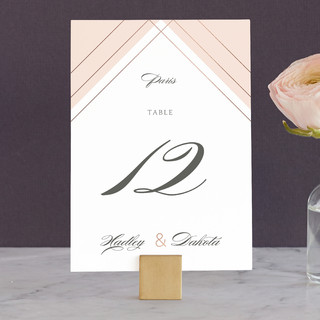 Elegantly Lined Wedding Table Numbers
