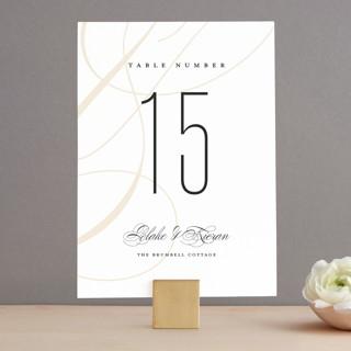 Today & Always Wedding Table Numbers