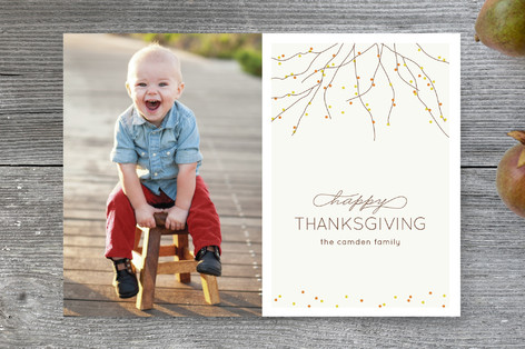 Harvest Branches Thanksgiving Cards