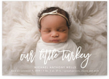 Little Turkey by Jennifer Postorino