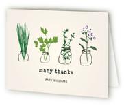 Thank You Herbs by fox bear designs