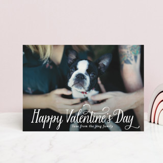 Scripted Holiday Valentine's Day Postcards
