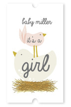 Ready to Hatch Baby Shower Stickers