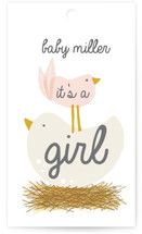 Ready to Hatch Baby Shower Favor Tags