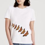Monarch Migration by Jennifer Holbrook