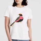 Peace Dove by Deborah Velasquez