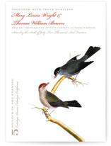 Vintage Bird Print by Jenn Goodrich