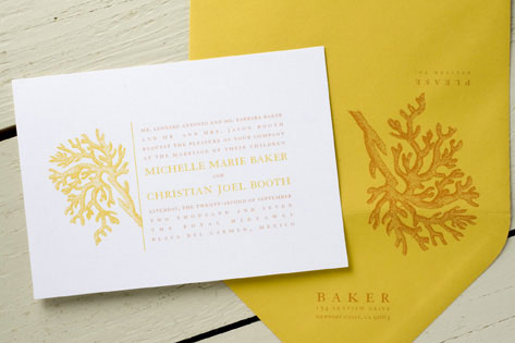 Michelle Wedding Invitations by Wiley Valentine