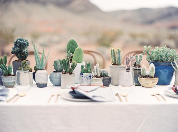 cactus place setting