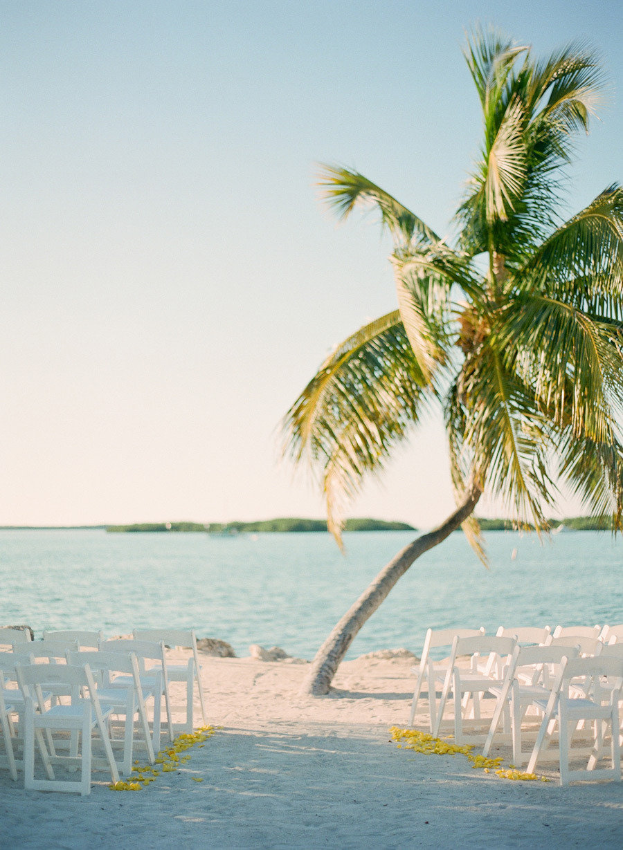 wedding ceremony on beach with palm tree