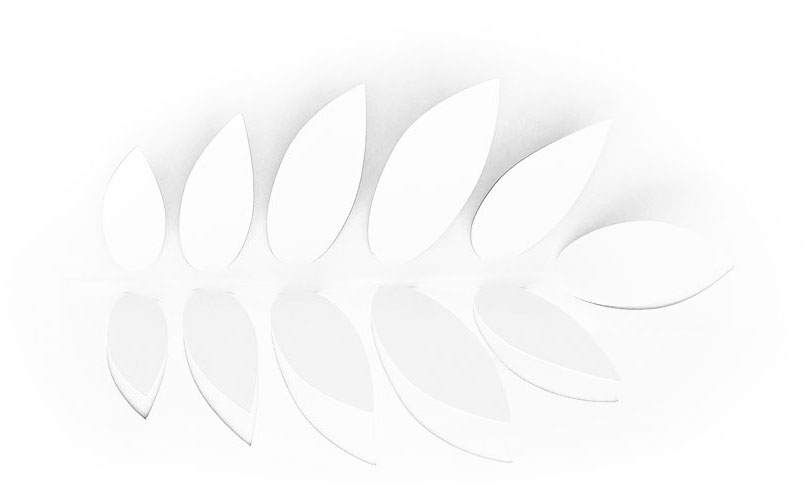 white paper leaves