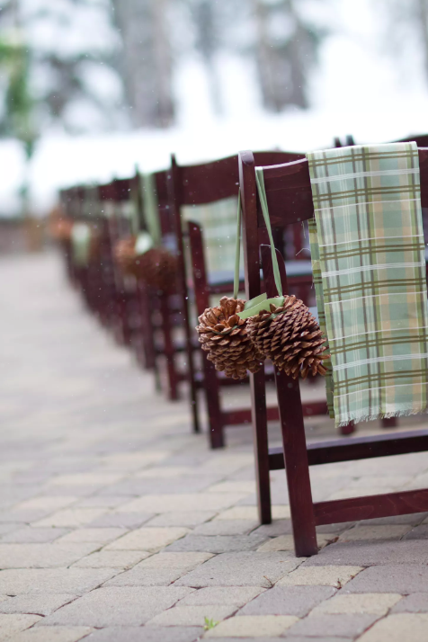 wedding aisle with chairs and pinecones