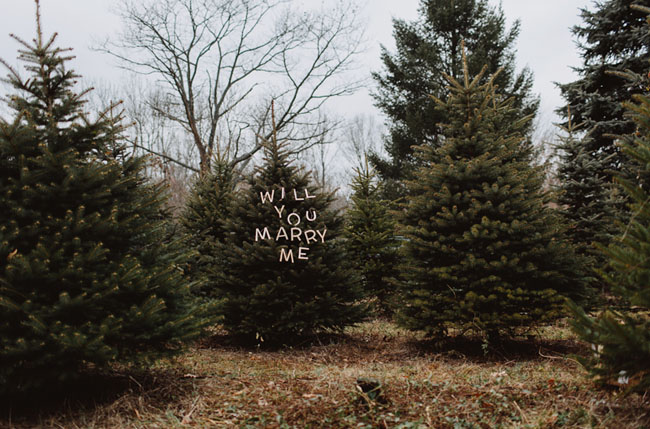 will you marry me written on christmas tree
