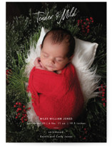 This is a white babys first christma by Cindy Reynolds called Tender And Mild with standard printing on signature in postcard.