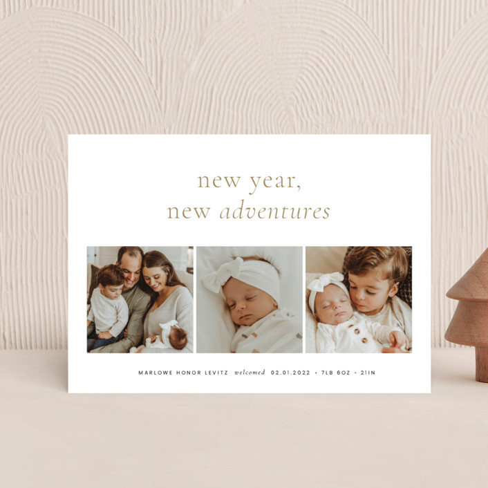 """""""Awaits"""" - Holiday Birth Announcement Postcards in Ink by Blustery August."""