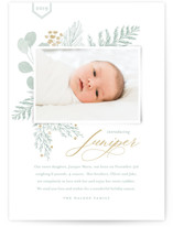 This is a brown babys first christma by Oscar & Emma called Juniper with standard printing on smooth signature in standard.