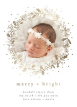 Holly Jolly and Bright Holiday Birth Announcements By Bethan