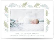 This is a blue babys first christma by Nella Designs called holiday feathers with standard printing on smooth signature in standard.