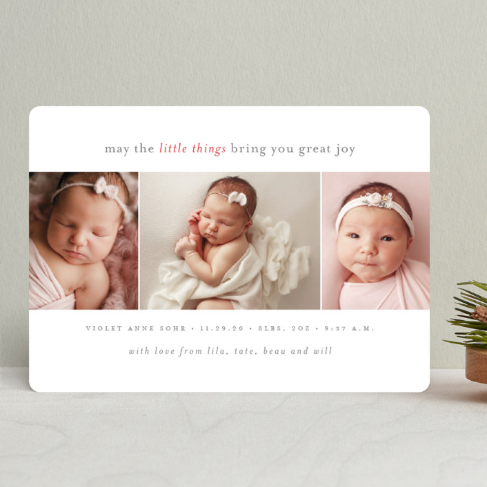 """little and great"" - Holiday Birth Announcements in Holly by Sara Hicks Malone."