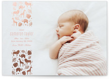 This is a pink foil stamped birth announcement by Carolyn MacLaren called Safari with foil-pressed printing on smooth signature in standard.