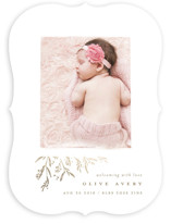 This is a brown foil stamped birth announcement by Lori Wemple called sweet branches with foil-pressed printing on smooth signature in standard.