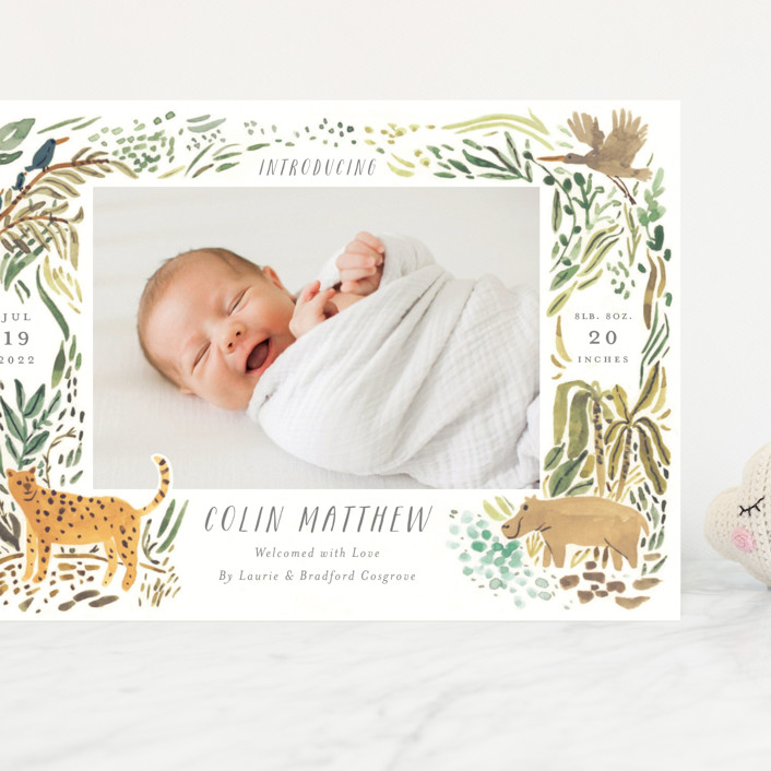 """Jungle Friends"" - Whimsical & Funny Grand Birth Announcements in Jungle by Morgan Ramberg."