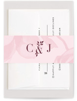 This is a purple belly band by kelli hall called Centifolia Rose with standard printing on signature text in belly band.