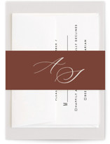This is a brown belly band by Nicole Barreto called Streamlined with standard printing on signature text in belly band.