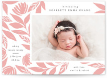 This is a pink letterpress birth announcement by Mansi called Sylvan with letterpress printing on bright white letterpress paper in standard.