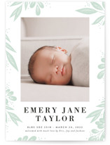 This is a green letterpress birth announcement by Alethea and Ruth called Leaf Branches with letterpress printing on bright white letterpress paper in standard.