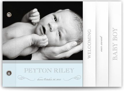 Sweet Sophistication Birth Announcement Minibooks