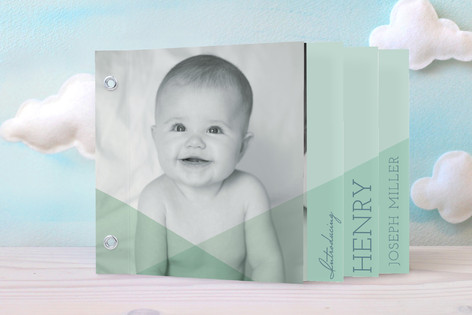 Layered Love Birth Announcement Minibook™ Cards