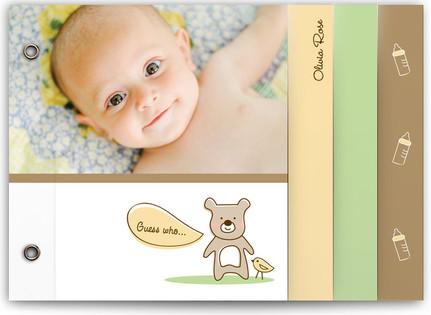 Baby Bear Birth Announcement Minibooks