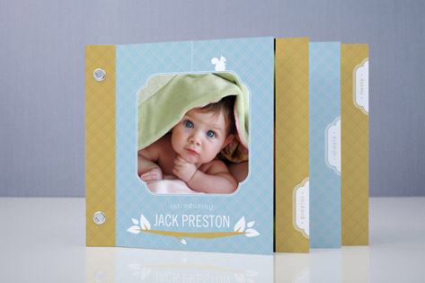 Woodland Baby Birth Announcement Minibook™ Cards