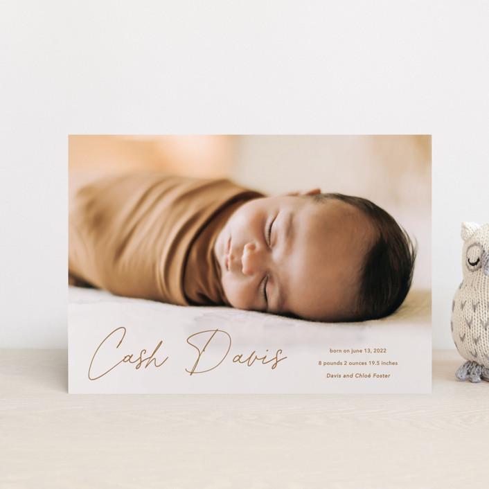 """""""Swaddle"""" - Modern Birth Announcement Petite Cards in Rust by Stacey Meacham."""