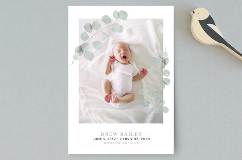 Eucalyptus Laurels Birth Announcement Petite Cards