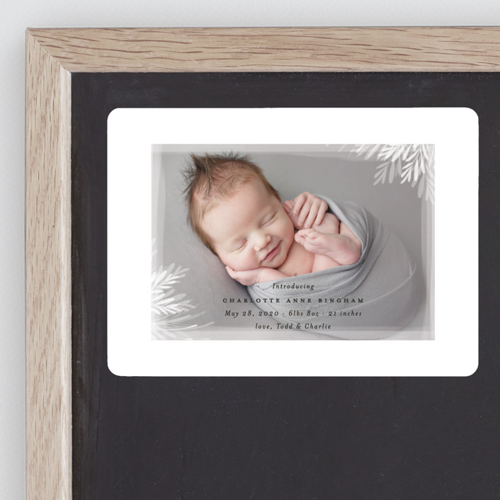 """""""whispering botanicals"""" - Birth Announcement Magnets in Cotton by Faith Dorn."""