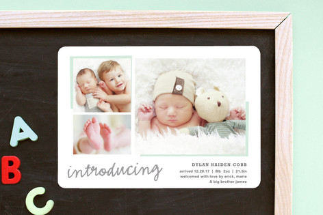All The Details Birth Announcement Magnets