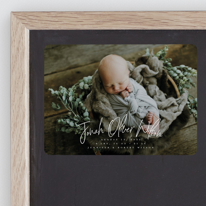 """""""Bundle"""" - Modern Birth Announcement Magnets in Cloud by Owl and Toad."""