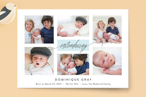Refreshing Gallery Birth Announcement Postcards