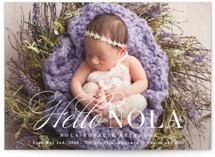 Hello Nola by Hooray Creative