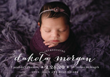 chic baby Birth Announcement Postcards By Lauren Chism