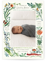 This is a green birth announcement postcard by Morgan Ramberg called Snuggle Bug with standard printing on signature in postcard.