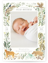 This is a green birth announcement postcard by Morgan Ramberg called Jungle Friends with standard printing on signature in postcard.